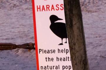 Possibly vandalized regulatory sign.