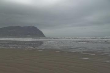 This is what this stretch of the beach looked like on 1/13/2014