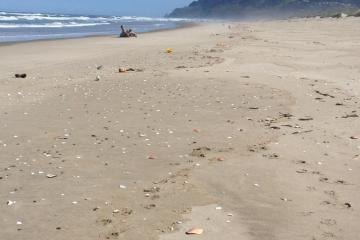 As far as the eye could see, buoys and trash litter the beach.