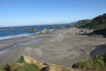 View at low tide (minus 0.1) of Mile 8, looking north from a bluff at Harris Beach S.P.