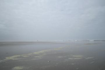 Typical cloudy day at the beach complete with a bit of sea foam and a very mall black dot on the horizon which was actually two of the people seen on the beach.