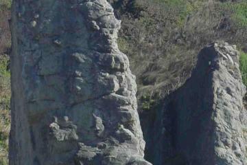 Unusual 50-ft tall sentinel rock