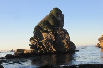 """Gorilla Rock"" located just offshore near the northern end of mile 7."