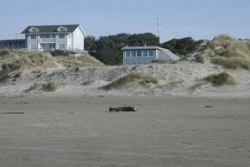 Bulldozed foredune summer 2007 by homeowner in Heceta Beach