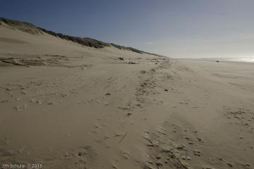 Looking south from parking lot 3 beach access, showing beach and dune areas