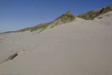 Section of dune separating.
