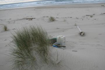 Another collected pile of debris, located about 300 yards south of debris pile no. 2.  The photo shows the pile is not well protected from wind.