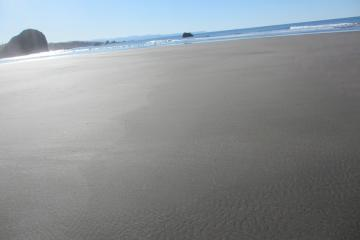 A very clean beach at Harris Beach State Park with very little debris was found on February 22, 2015. This may be the result of the recent King Tides as well as the absence of recent major storms in the area.
