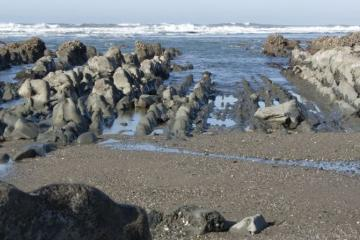 This entire area is normally covered in sand. You can see how the lowest-level rocks are strangely smooth and clean -- seaweed and barnacles have not even had a chance to colonize them.