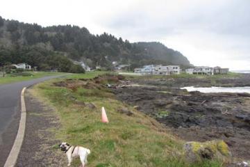 South of bridge looking toward Agate Cove
