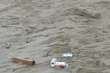 typical trash