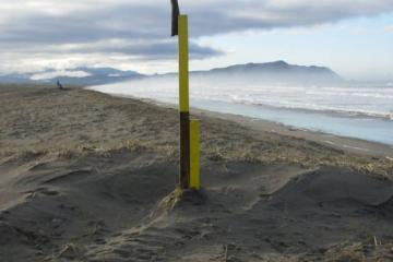 Trail marker post showing dune height growth -- shorter post used to be 8' tall (3 years ago), taller one was 8' tall last summer, now 6' tall.