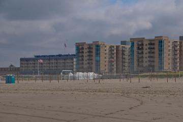 """Hundreds of volleyball nets set up. Preparing for the """"Wolds larges amateur beach volleyball tournament""""."""