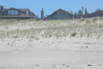 Dune modification to improve home owners views with dune grass replanting.