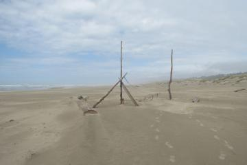 A few driftwood structures found on the Bayshore.