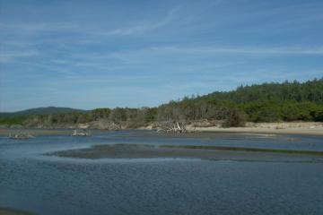 This photo shows the low water condition of the Takenitch estuary just west of the sand cliffs and north of the creek's bend into the ocean outlet.