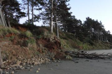 Arcadia beach slide