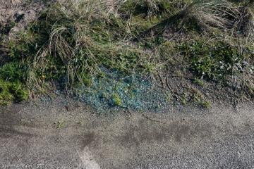 East edge of Parking lot 3, broken glass, looks like auto glass, in grass