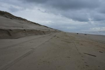 approx 3/4 way to parking lot 3 access from parking lot 4 access, 4 to 5 foot cut in dune