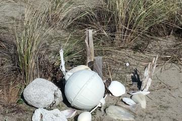 This collection of items had some plastic but appeared to be a memorial so I left it.  It was well up in the dune grass.