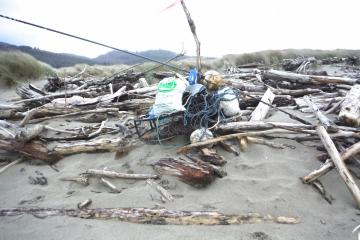 Earlier west winds deposited a lot of ocean debris.  Quite a bit had Japanese characters.  Some group had already collected much of this.  Thank you!