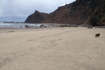 Easter Sunday 2016.  The sand has been moved out, broadening the beach in places and scouring other areas down to rock.