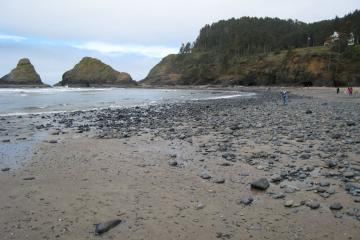 beach at low tide near water line looking north to caves which are below the bluff