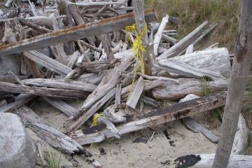 Driftwood structure on the southern end of the mile previously shown in a mile report was demolished sometime after Jan. 1, 2008 and a fire was started in the driftwood pile as shown in the foreground of the photo.