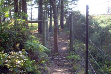 New fenced-in trail going west from Tokyo Ln., eventually joining the old trail that descends the bluff to Merchants beach.