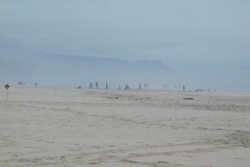 Plover buffer and beachgoers
