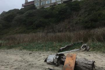 Plywood on beach