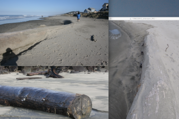 Surf moves large log.
