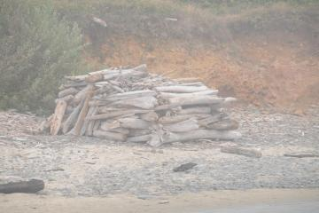 Driftwood stacked in a pile by Tenmile Creek