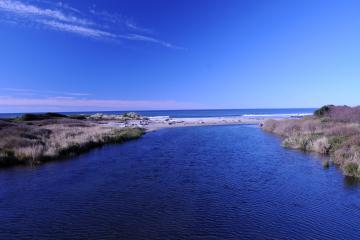 Mouth of Tenmile Creek.
