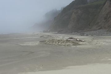 Dunes down the beach