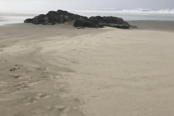 Rock formation covered by sand